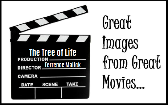 great-images-tree of life